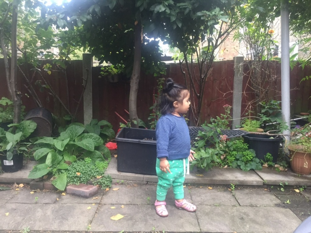 18 month old toddler update